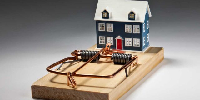 Pest Control for homes